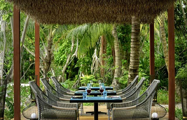 Restaurant Phat Chameleon