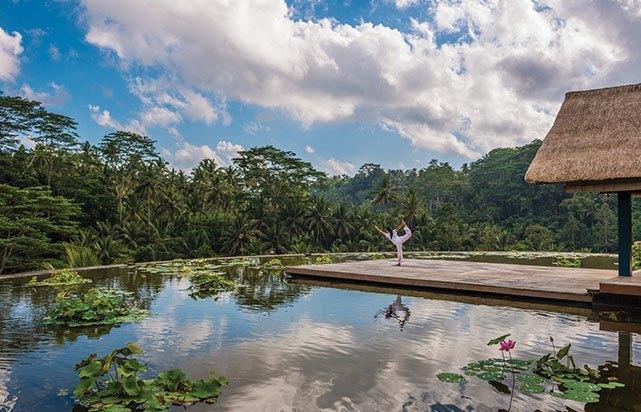 Yoga at Lotus Pond