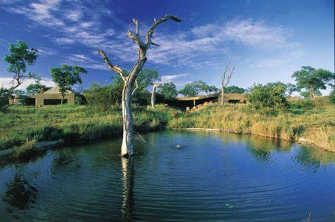 Lodge Water hole