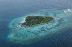 Taj Coral Reef Maldives