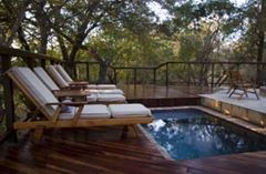 Shumbalala Game Lodge (at Thornybush)